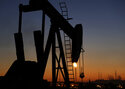 Gulf Arab states, squeezed by climate change, still tout oil