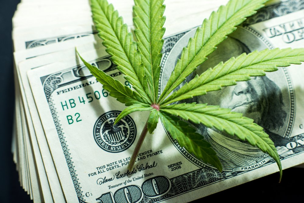 7 Marijuana Stocks That Can't Be Ignored in 2019