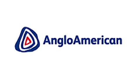 Anglo American Platinum Ltd logo