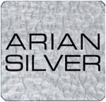Arian Silver Corp logo