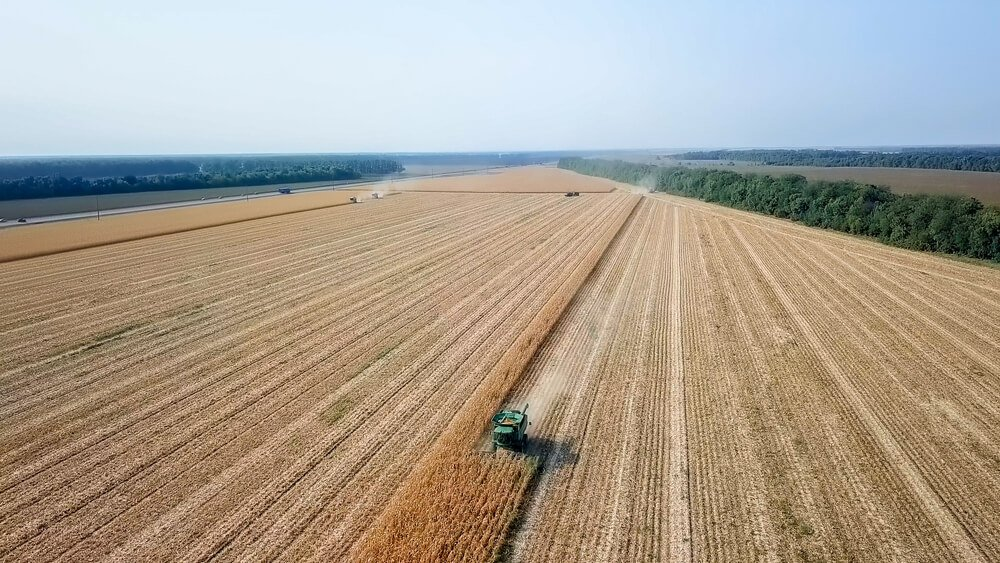 Best Agriculture Stocks to Buy in 2020