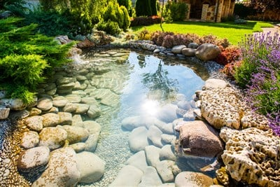 SiteOne Landscape Supply Grows To New High