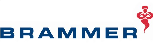 97887 (BRAM.L) logo
