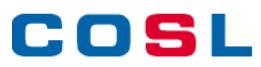 China Oilfield Services logo