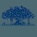 Banyan Network logo