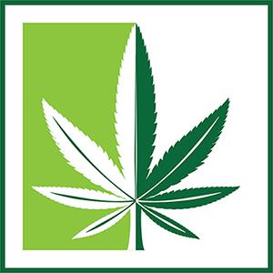 Mchain logo