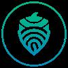 The Acorn Collective logo