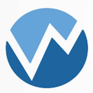 WPP TOKEN logo