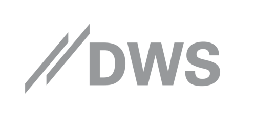DWS Group & GmbH Co KgaA logo