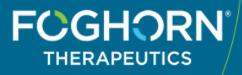 Foghorn Therapeutics logo
