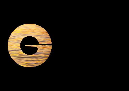 GIVAUDAN SA/ADR logo