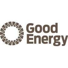 Good Energy Group PLC (GOOD.L) logo