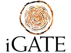 iGATE logo
