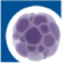 Regen BioPharma logo