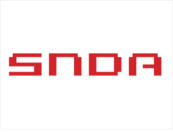 Shanda Interactive Entertainment logo