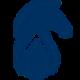 Blueknight Energy Partners, L.P. logo