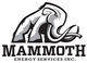 Mammoth Energy Services Inc logo