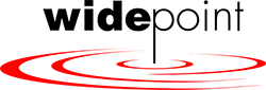 WidePoint logo