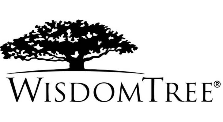 WisdomTree International LargeCap Dividend Fund logo