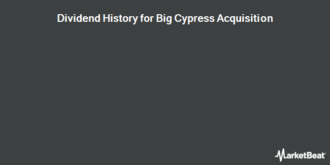 Dividend Payments by Quarter for Blue Calypso (OTCMKTS:BCYP)