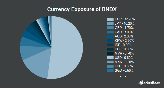 Currency Exposure of Vanguard Total International Bond ETF (NYSEARCA:BNDX)