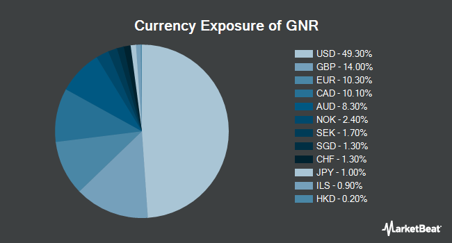 Currency Exposure of SPDR S&P Global Natural Resources ETF (NYSEARCA:GNR)