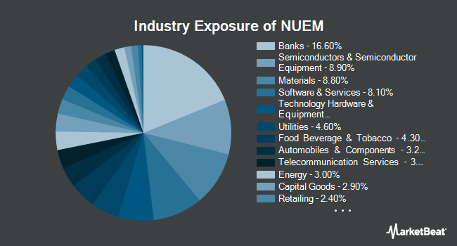 Industry Exposure of NuShares ESG Emerging Markets Equity ETF (BATS:NUEM)
