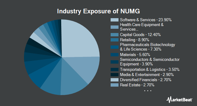 Industry Exposure of NuShares ESG Mid-Cap Growth ETF (BATS:NUMG)