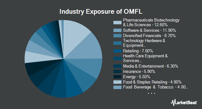Industry Exposure of Invesco Russell 1000 Dynamic Multifactor ETF (BATS:OMFL)