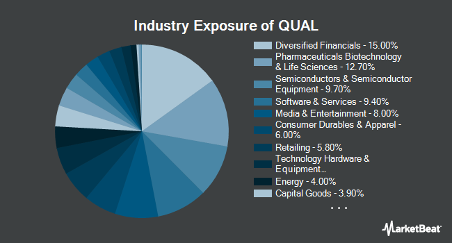 Industry Exposure of iShares Edge MSCI USA Quality Factor ETF (BATS:QUAL)