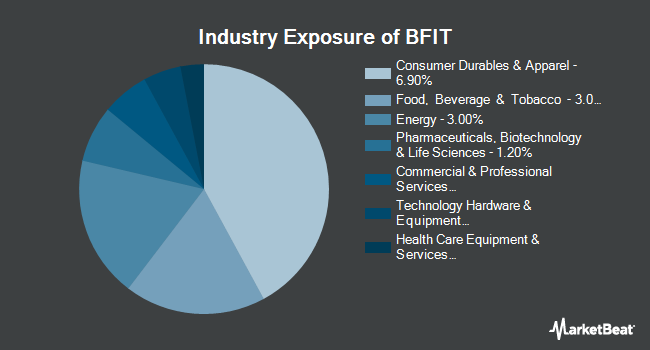 Industry Exposure of Global X Health & Wellness Thematic ETF (NASDAQ:BFIT)