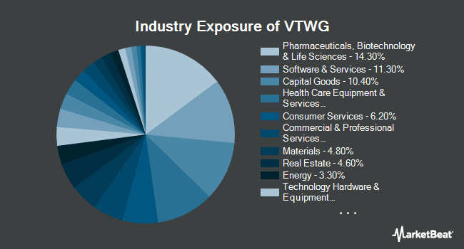 Industry Exposure of Vanguard Russell 2000 Growth (NASDAQ:VTWG)