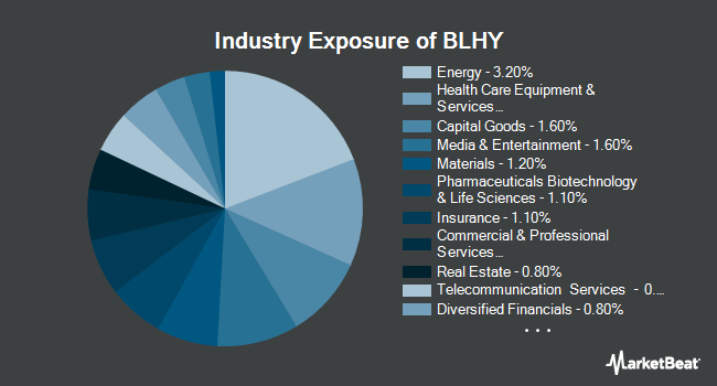 Industry Exposure of Virtus Newfleet Dynamic Credit ETF (NYSEARCA:BLHY)