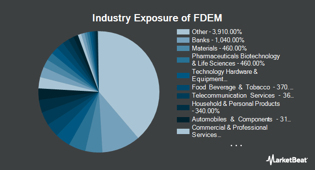 Industry Exposure of Fidelity Targeted Emerging Markets Factor ETF (NYSEARCA:FDEM)