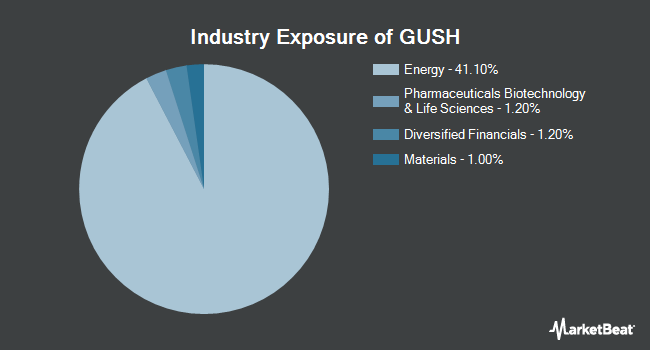 Industry Exposure of DIREXION Shs ET/DIREXION DAILY S&P (NYSEARCA:GUSH)
