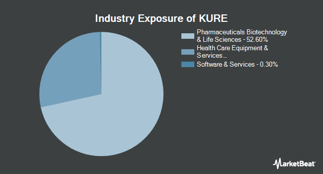 Industry Exposure of KraneShares MSCI All China Health Care Index ETF (NYSEARCA:KURE)