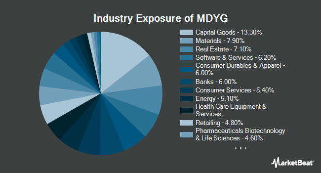 Industry Exposure of SPDR S&P 400 Mid CapGrowth ETF (NYSEARCA:MDYG)