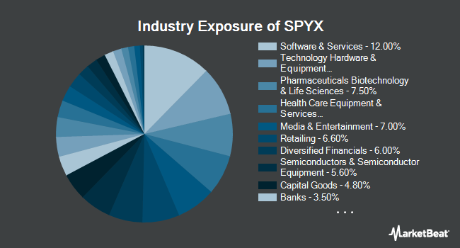 Industry Exposure of SPDR S&P Fossil Fuel Reserves Free ETF (NYSEARCA:SPYX)