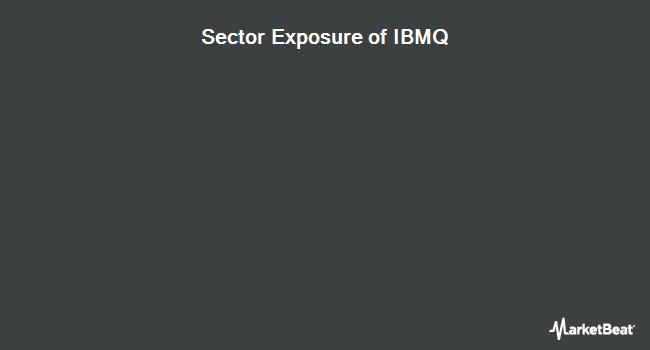 Sector Exposure of iShares iBonds Dec 2028 Term Muni Bond ETF (BATS:IBMQ)