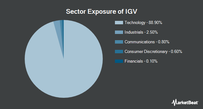 Sector Exposure of iShares North American Tech-Software ETF (BATS:IGV)