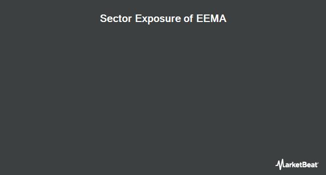 Sector Exposure of ISHARES Inc/MSCI EMERGING MKTS (NASDAQ:EEMA)