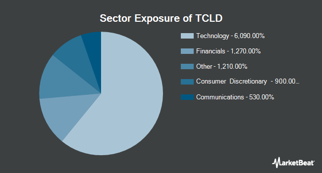 Sector Exposure of Tortoise Cloud Infrastructure Fund (NYSEARCA:TCLD)