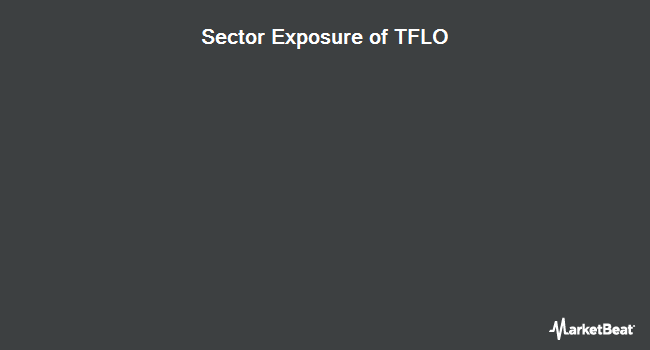 Sector Exposure of iShares Treasury Floating Rate Bond ETF (NYSEARCA:TFLO)