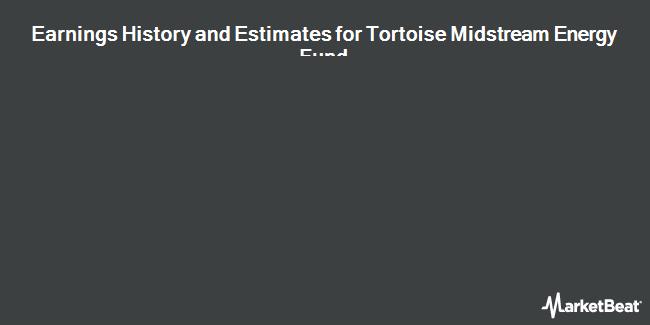 Earnings by Quarter for Tortoise MLP Fund (NYSE:NTG)