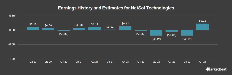 Earnings by Quarter for NetSol Technologies (NASDAQ:NTWK)