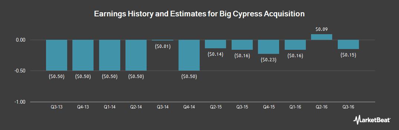 Earnings by Quarter for Blue Calypso (OTCMKTS:BCYP)