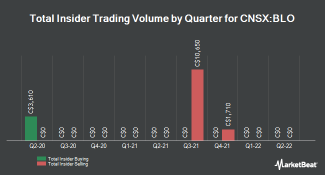 Insider Buying and Selling by Quarter for Cannabix Technologies (CNSX:BLO)