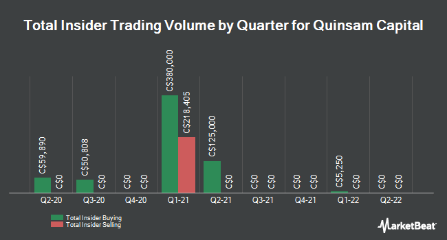 Insider Buying and Selling by Quarter for Quinsam Capital (CNSX:QCA)