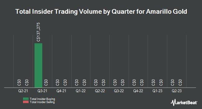 Insider Trading History for Amarillo Gold (CVE:AGC)