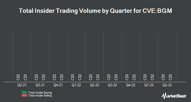 Insider Trades by Quarter for Barkerville Gold Mines (CVE:BGM)